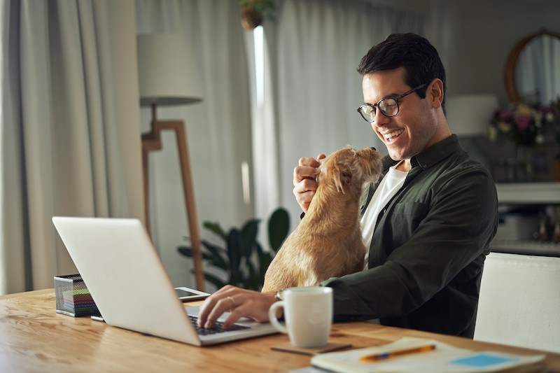 Work From Home - Calnet IT Solutions